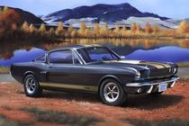 Maquette de Voiture - Shelby Mustang GT 350 H - Revell 7242