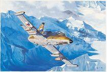 Maquette avion militaire : L-39ZA Albatros - 1/48 - Trumpeter 755805