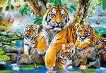 Puzzle Animaux Tigres - 1000 pièces - Castorland 104413