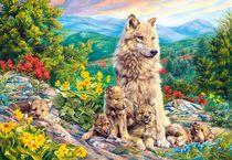 Puzzle Animaux Loups - 1000 pièces - Castorland 104420
