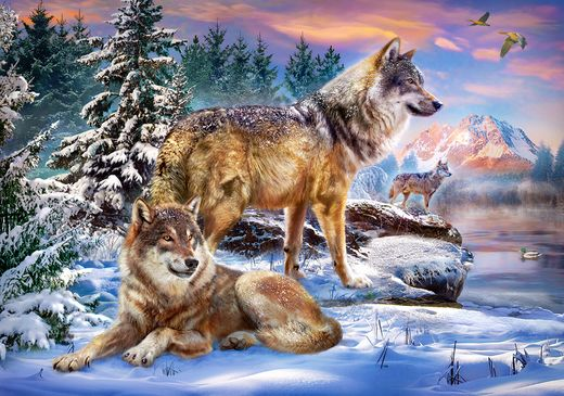 Puzzle Pays des loups - 500 pièces - Castorland 53049