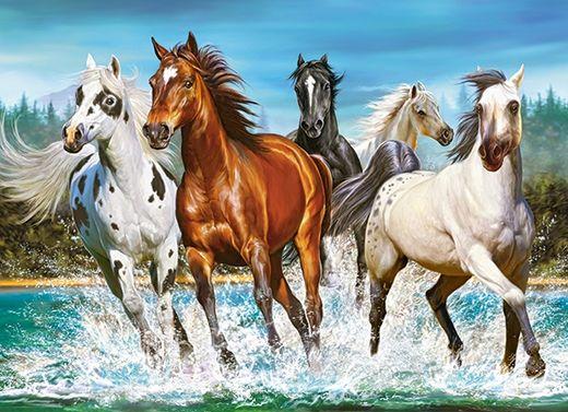 Puzzle chevaux - 200 pièces - Castorland 222056